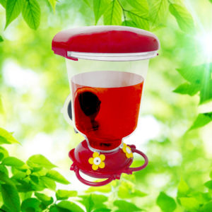 Window-Mount 20 oz. Hummingbird Feeder