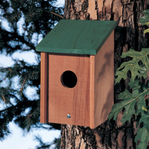 Green Roof Bird Post House