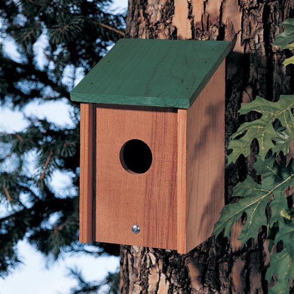Green Roof Bird Post House