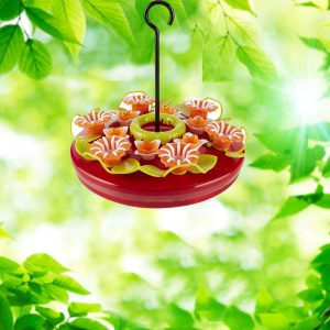 Hanging Tray 16 oz. Hummingbird Feeder