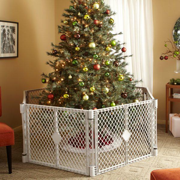Petyard Around Christmas Tree