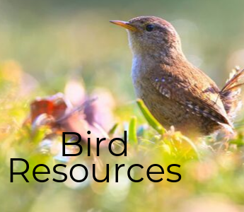 Bird Resources mobile