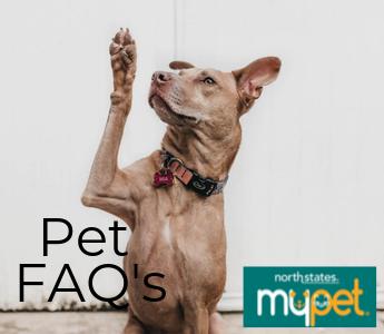 Pet FAQs mobile
