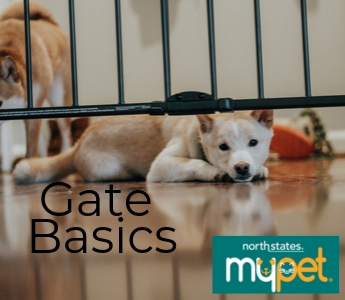 Gate Basics Pet Mobile