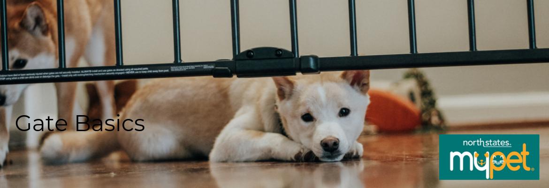 Gate Basics Pet