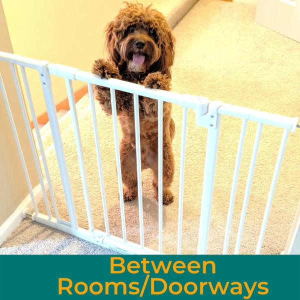 Between Rooms & Doorways Icon Pet