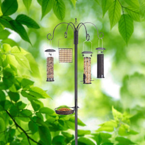 Ultimate Birdfeeding Station