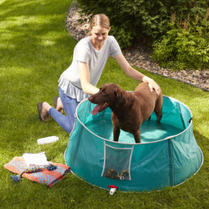 "48"" Pet Bath/Splash Pool Dog Bath"