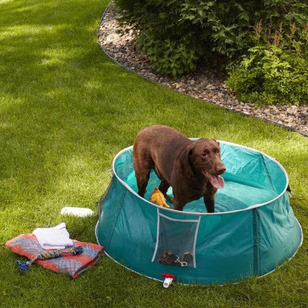 "48"" Pet Bath/Splash Pool with Dog"