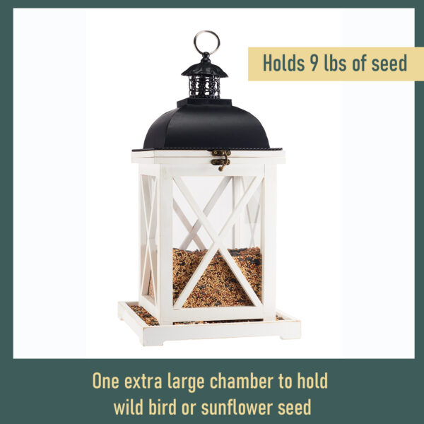 Large Lantern Feeder Seed Capacity