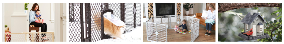 About us baby dog and bird products
